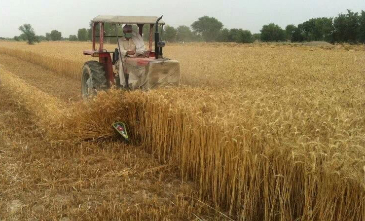 Tractor Mounted Reaper Wheat Amp Rice Reaper